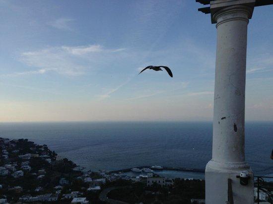 Caesar Augustus Hotel: Capri
