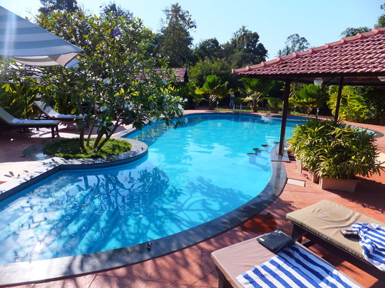The Fern Gardenia Resort : large pool