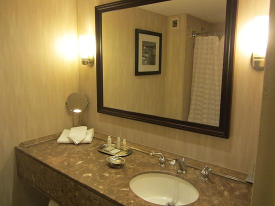 Renaissance Baltimore Harborplace Hotel: Bathroom