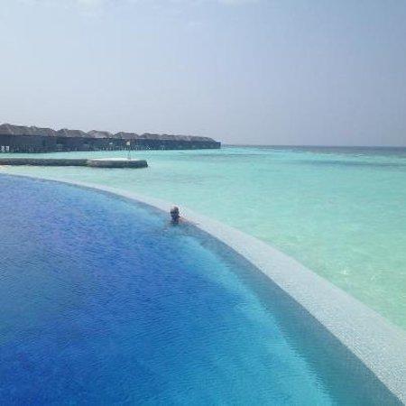 Lily Beach Resort & Spa: aqva bar - lily beach resort, maldives
