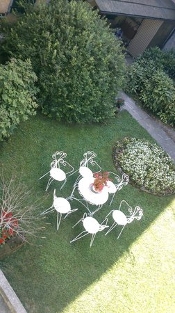 Casa Orter: From my room( in the backyard)