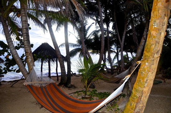 Little Corn Beach and Bungalow: Hammocks