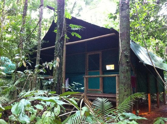 Daintree Crocodylus: Candlenut Bungalow
