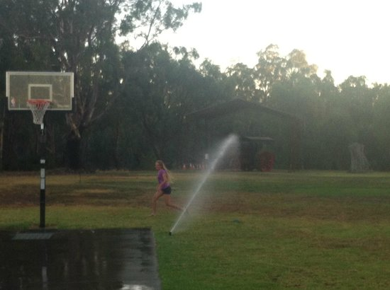 Tindarra Resort: Fun under the sprinklers