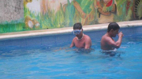Hotel Villa del Mar: mis sobrinos en la alberca
