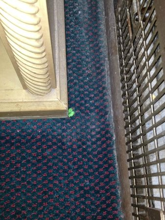 Lodi El Rancho Motel: No mint on the pillow, but free gum on the floor