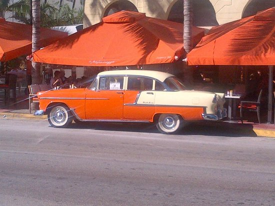 Gray Line Miami Hop on Hop off Bus : 56 Chev in front of local hang out