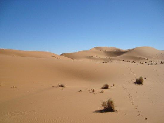 Auberge Africa: dunes
