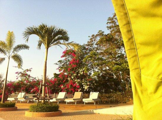 Royal Cliff Beach Hotel:                   Территория отеля