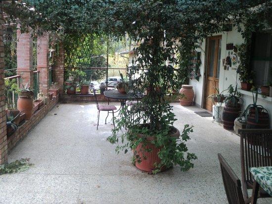 Agriturismo Lucciano: Terrazza appartamento Cipresso