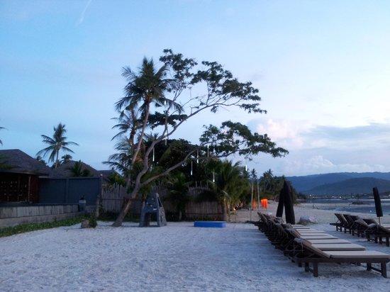 Deva Samui Resort & Spa: beach area 