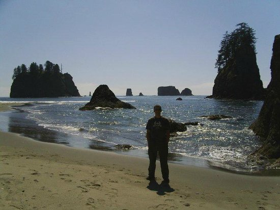 Second Beach Trail With Sea Stacks And Hiking Lapush Wa