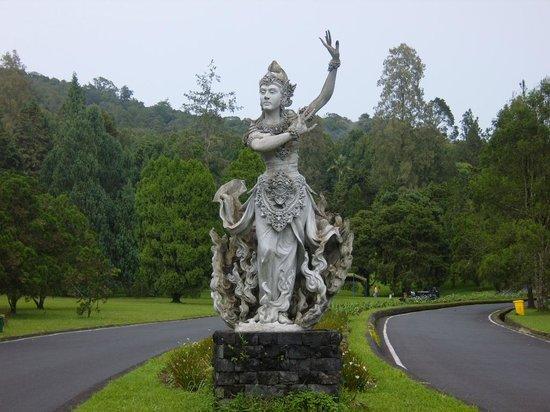 Bali Botanic Garden : mooi beeld bij de entree
