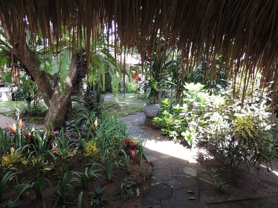 Bali Mystique Hotel and Apartments: Pathways to bungalows