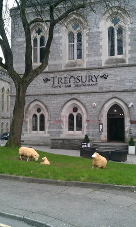 Treasury Cafe Bar Restaurant Sheep May Safely Graze