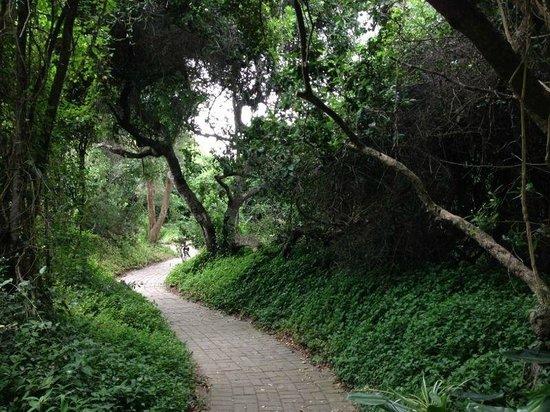 Stanley Island :                   Gardens