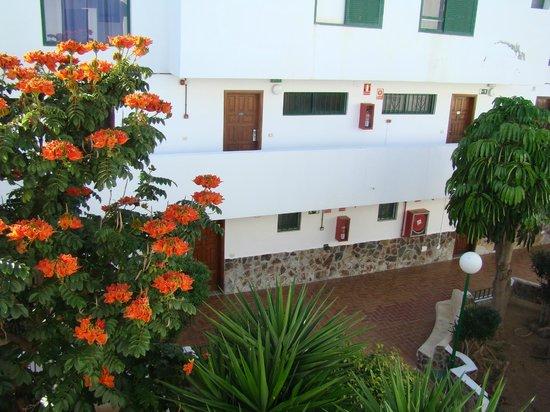 Apartments Alondras Park: inner passage