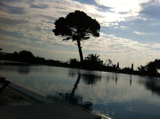 Rixos Premium Belek:                   Pool area