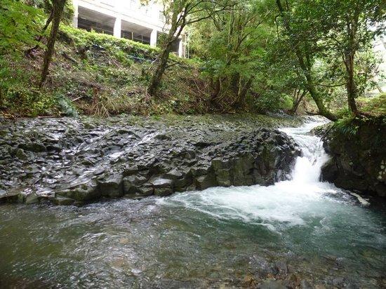 Kawazu Nanadaru Waterfalls: 河津七滝