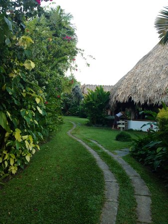 Kariwak Village Holistic Haven and Hotel: The garden and yoga place