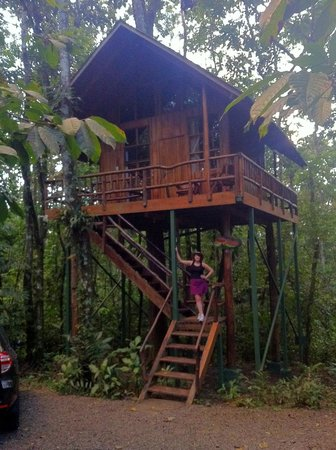 Tree Houses Hotel Costa Rica:                   Sloth Tree House