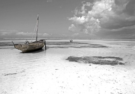 Essque Zalu Zanzibar: Picture from Vivide Montero