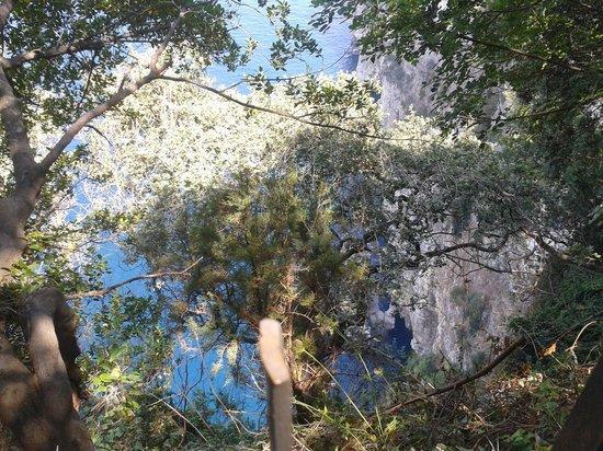 Villaggio Turistico Baia Serena: vista dalla casetta