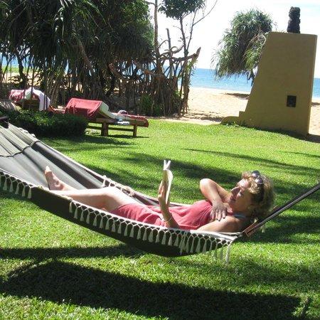 Aditya: Hotel garden