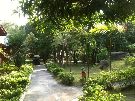 Tanote Villa Hill:                   Beautiful gardens of TVH