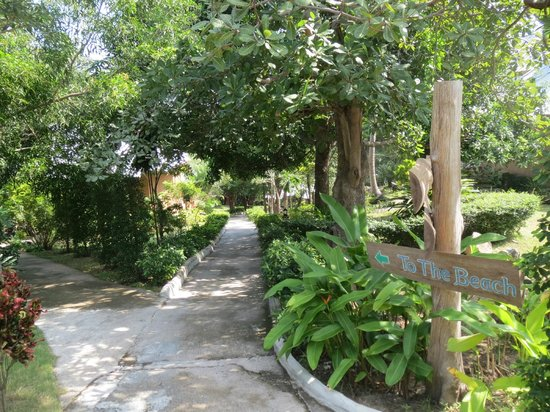 Tanote Villa Hill:                   The path across the resort to the reception / restaurant