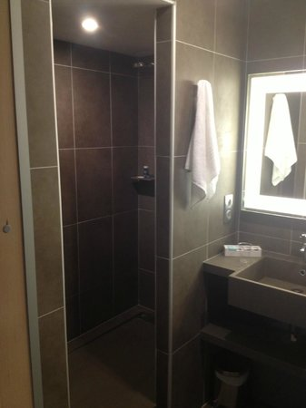 Novotel Toulouse Centre Wilson:                   rainshower