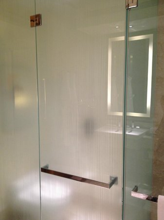 The Oberoi, Gurgaon: toilet behind glass