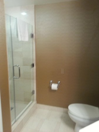 Omni Los Angeles at California Plaza:                   Shower Stall
