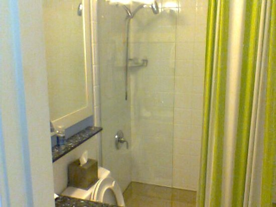 Hotel Indigo Chicago Downtown Gold Coast : Bathroom with spa shower head