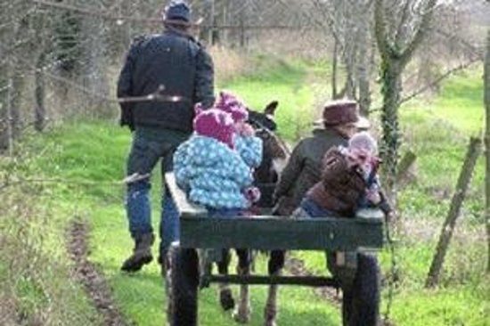 Belan Lodge children on donkey ride