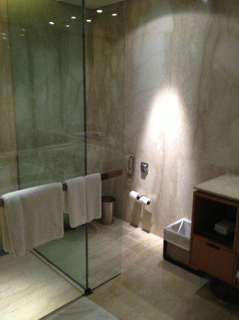 ITC Sonar: bathroom