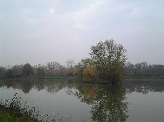 Agriturismo Ca dei Laghi: laghetti