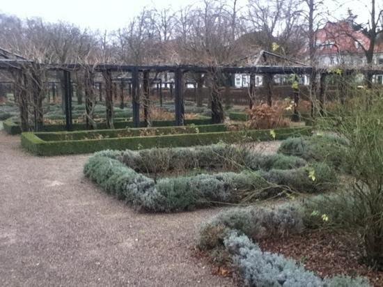 Schloss Rastatt:                                     Schlossgarten im Winter