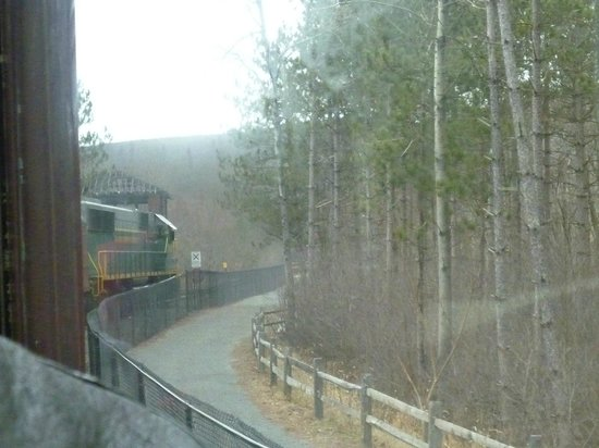 Lehigh Gorge Scenic Railway :                   Train ride