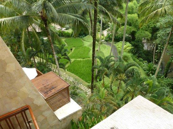 Four Seasons Resort Bali at Sayan: Gardenview