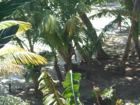 Bacolet Beach Club :                   The private beach