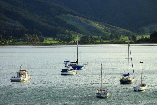 Anakiwa 401:                   Anakiwa harbour