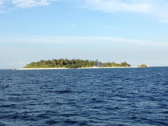 Makunudu Island:                   Welcome to the paradise. We even kill mosquitoes for you :)