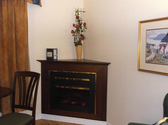 Ramada Plaza Gatineau/Manoir du Casino: Electric fireplace