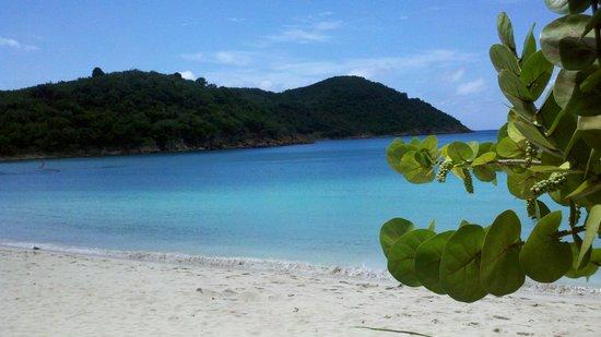 Island Beachcomber Hotel : Amazing!