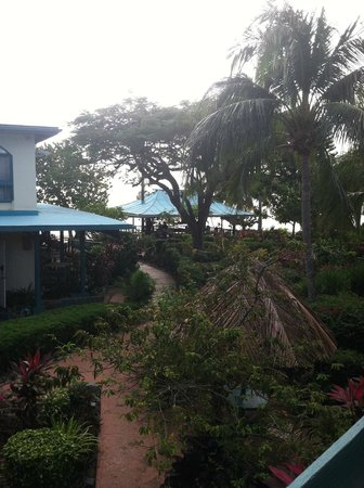 Island Beachcomber Hotel: the bar and restaurant!