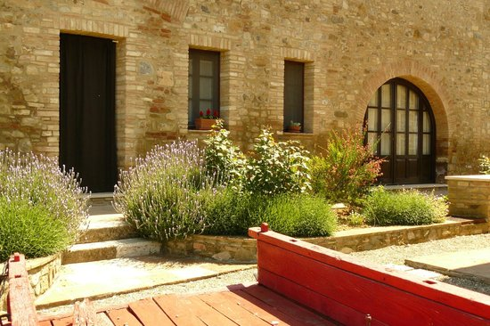 Linearis Holiday House & Agriturismo Podere Sertofano: Outdoor