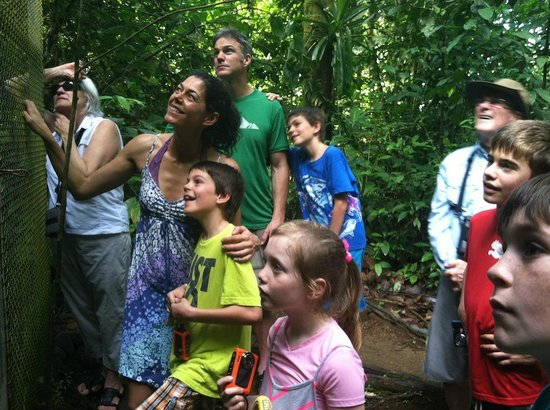 Bosque del Cabo Rainforest Lodge :                   Rapt attention at the animal rescue center