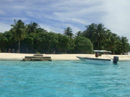 Decameron Marazul : Jhonny Cay