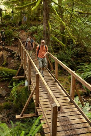 Taku Resort and Marina: Enjoy easy to challenging hikes in old growth forests.